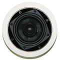 Встраиваемая акустика Davis Acoustics 100 RO